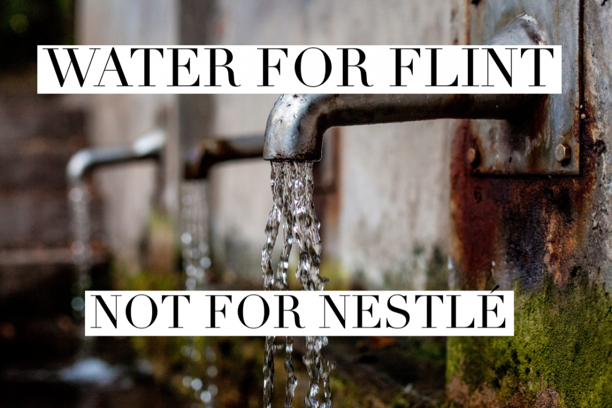 <a class=&quot;amazingslider-posttitle-link&quot; href=&quot;http://flowforwater.org/water-flint-not-nestle/&quot;>Water for Flint, Not for Nestlé</a>