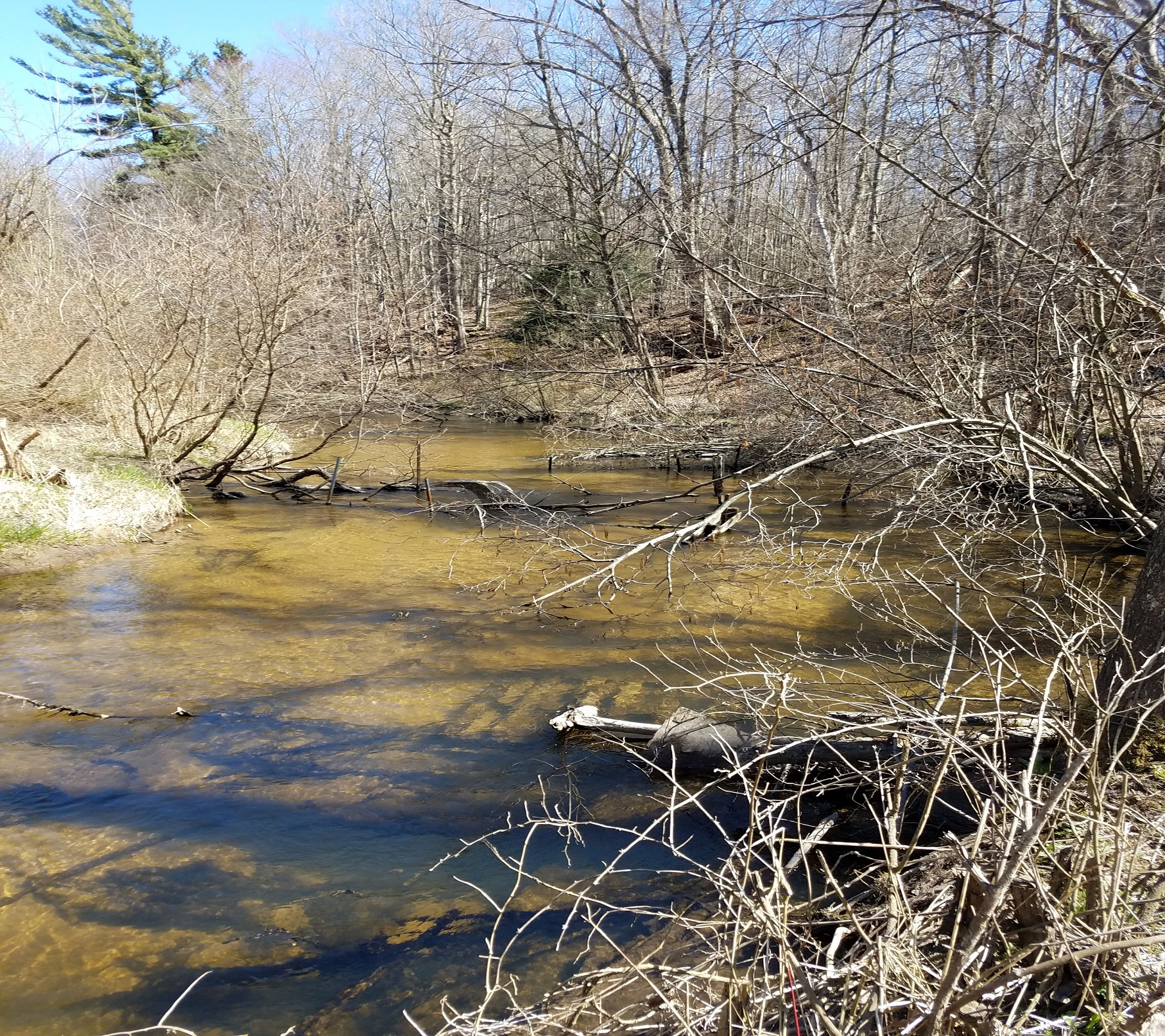 Michigan Department of Environmental Quality Archives - FLOW